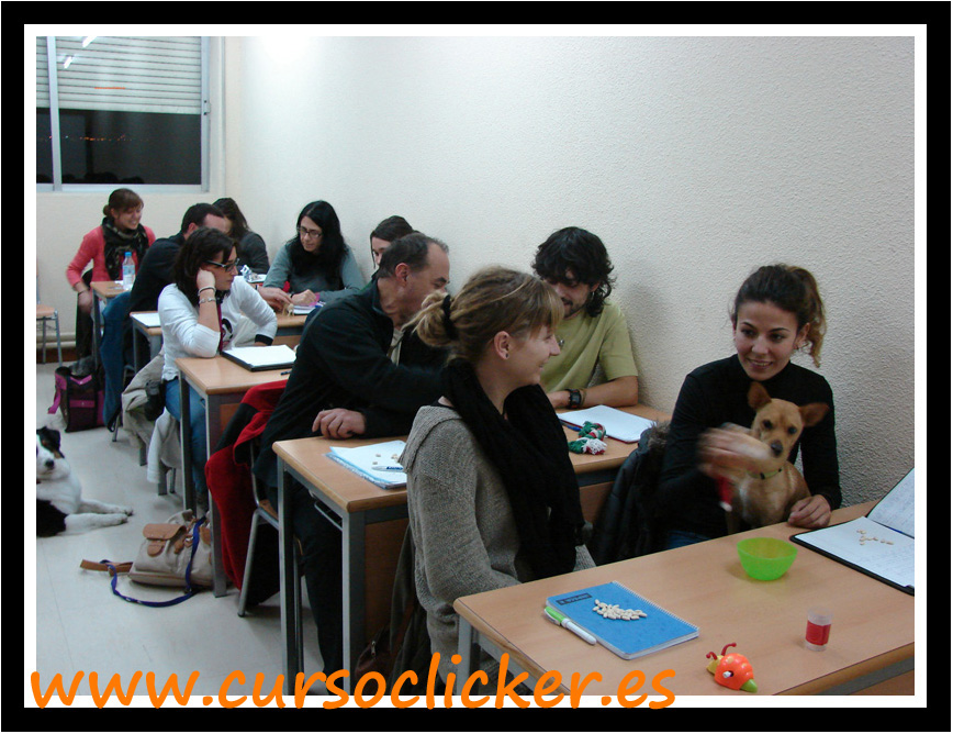 FACULTAD VETERINARIA EACTC 2012 - 2013www.cursoclicker.es 07JPG
