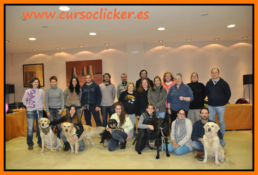 clicker trainers - super trainers kay laurence www.cursoclicker.es diciembre 2013 madrid 155