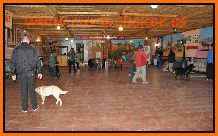 primer cap3 espaa enero 2012learning about dogs y www.cursoclicker.es con helen phillips029